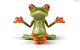 Portret użytkownika little-frog