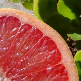 Produkty spożywcze wspomagające odchudzanie
